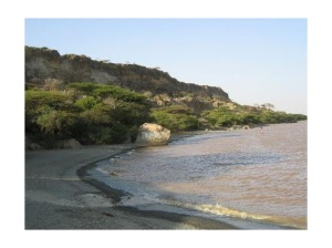 2860608-Lake_Langano_Ethiopia