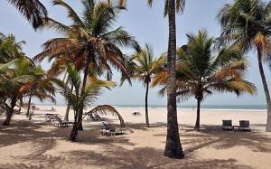 gambia-beach_1503887c