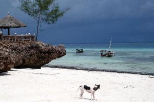 spiaggia-di-nungwi